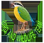 Bird and Wildlife Team Sri Lanka